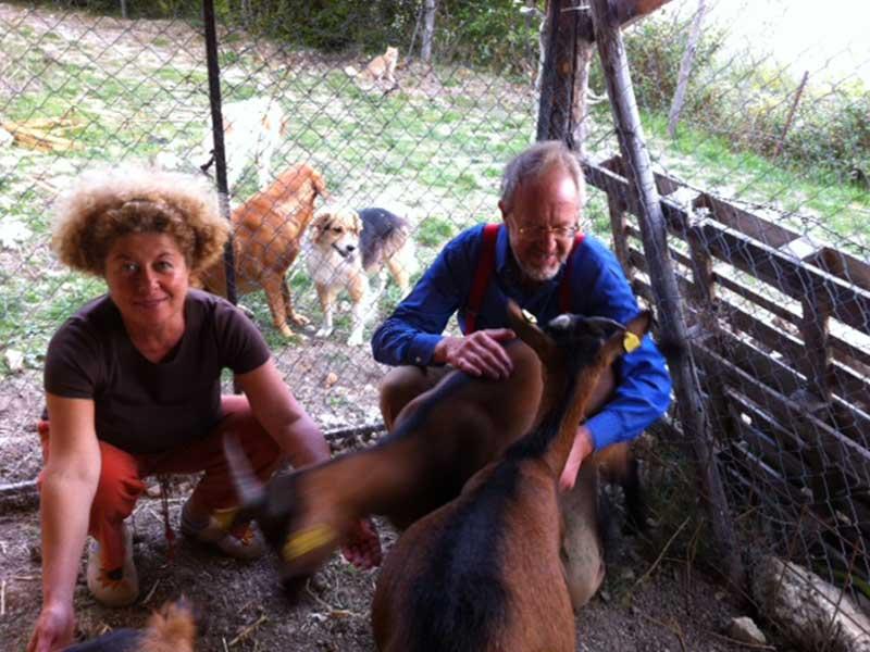 Cani e caprette