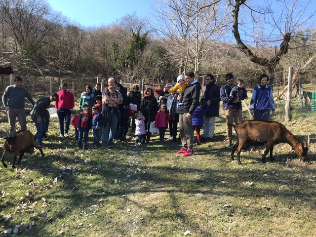 Il gruppo per la festa di compleanno di Cecilia, 3 anni, con le capre